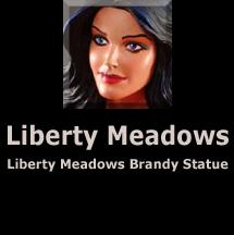 Liberty Meadows